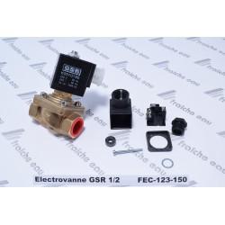 electrovanne GSR ,1/2 FF en laiton pour eau et air et gaz neutre, normalement fermée, bobine 220 volts ac à genappe, feluy, Ath