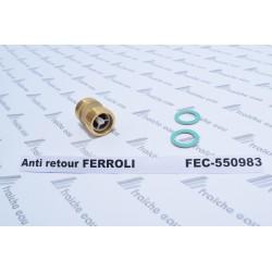 anti retour, clapet de retenue FERROLI 39806170 - RAPIDO 550983 vanne à sens unique raccordement 3/4 x 3/4  avec joints