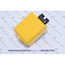 relais RIELLO 3001153, boîtier de combustion 525 SE, à Tubize, peruwelz, spa, libramont, marche, bouillon, Bastogne, ottignies,