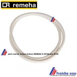 joint de surface REMEHA S 46746 pour W 60 ,wisselstukken onderdelen dichting afdichtingsring branderdek W60